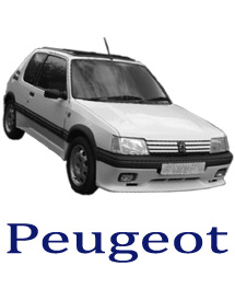 Peugoet 205spares and parts direct to UK addresses